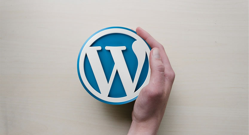 You are currently viewing Panoramica sulle funzioni di WordPress